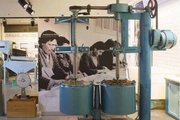 Вечни традиции: Мастиковият музей на Хиос и баните Акве Калиде край Бургас