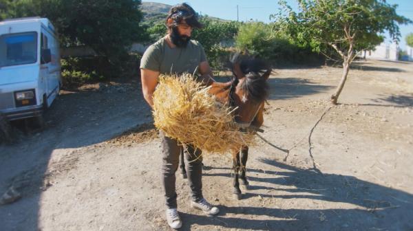 Спасените коне на Скирос възродиха острова. И още - плаващ научен център на Канарите