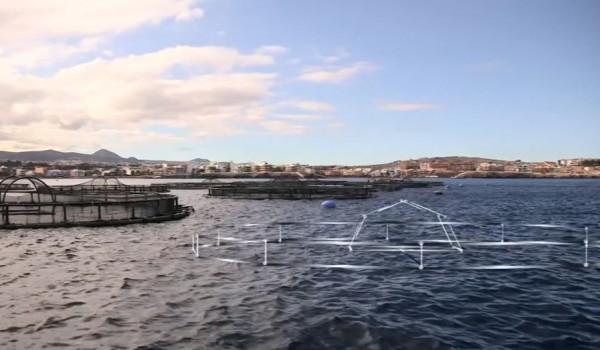 Модерен проект на Канарските острови доказа, че от наука може да се печели