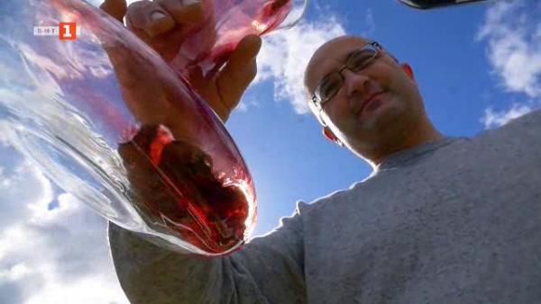 Виното на остров Гозо - да продаваш преживяване в бутилка